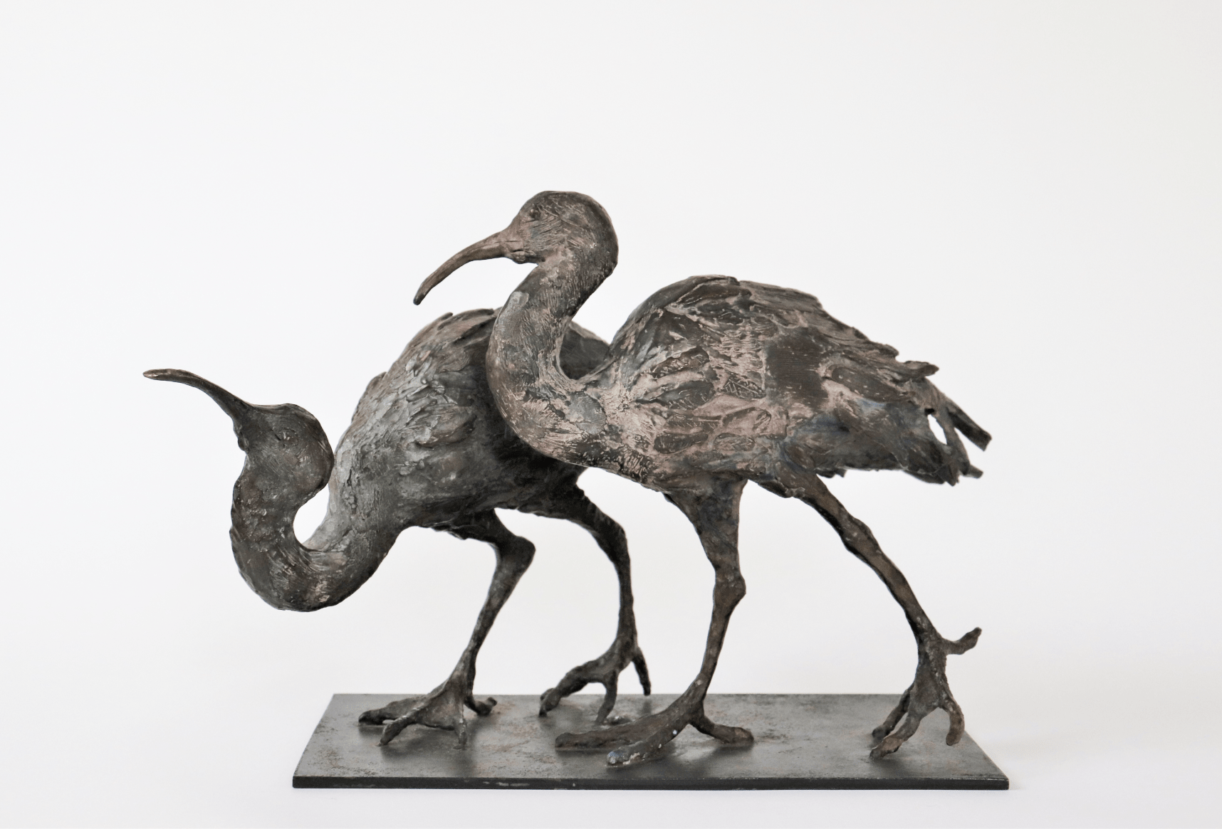 Deux Ibis,Florence Chésade,Sculpture contemporaine