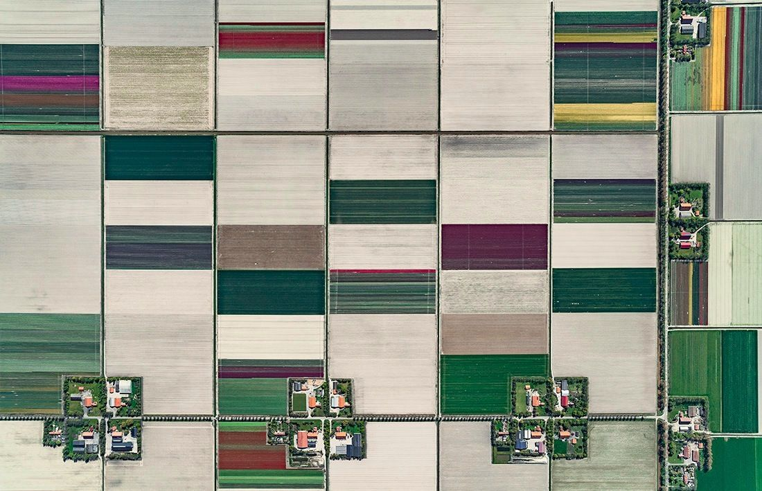 Aerial Views, Tulip Fields 01,Bernhard Lang,Photographie contemporaine