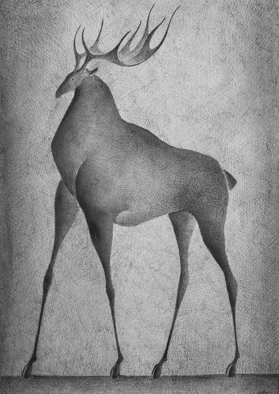 Deer V,Pierre Yermia,Drawing