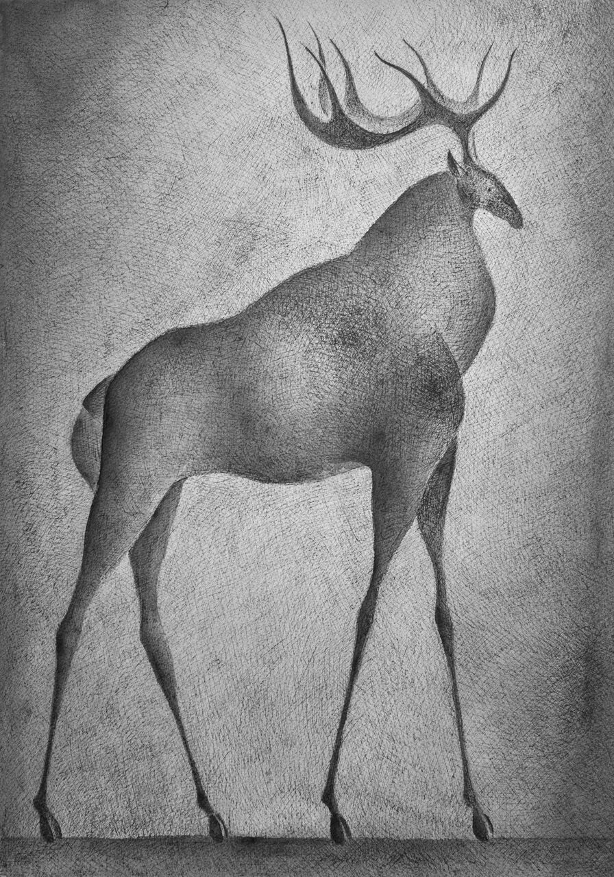 Deer IV,Pierre Yermia,Drawing