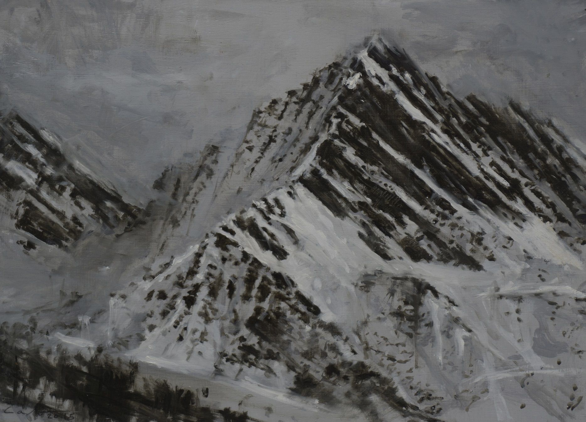 Pyrenees Study, Snow collection