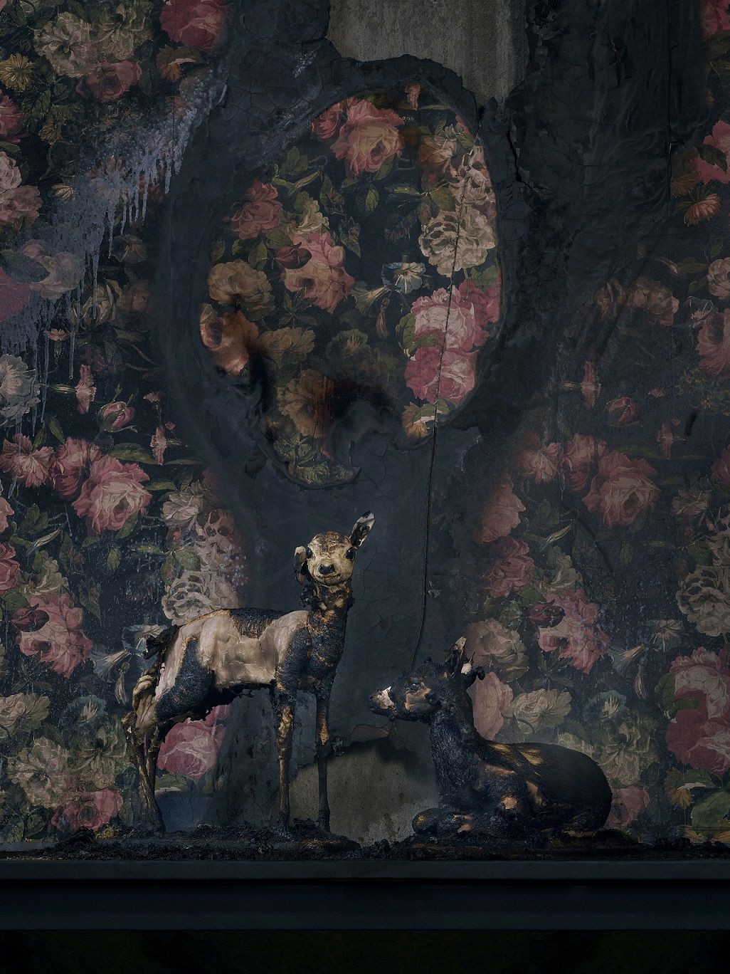 Fawns 2, série Residence of Impermanence,Christian Houge,Photographie contemporaine