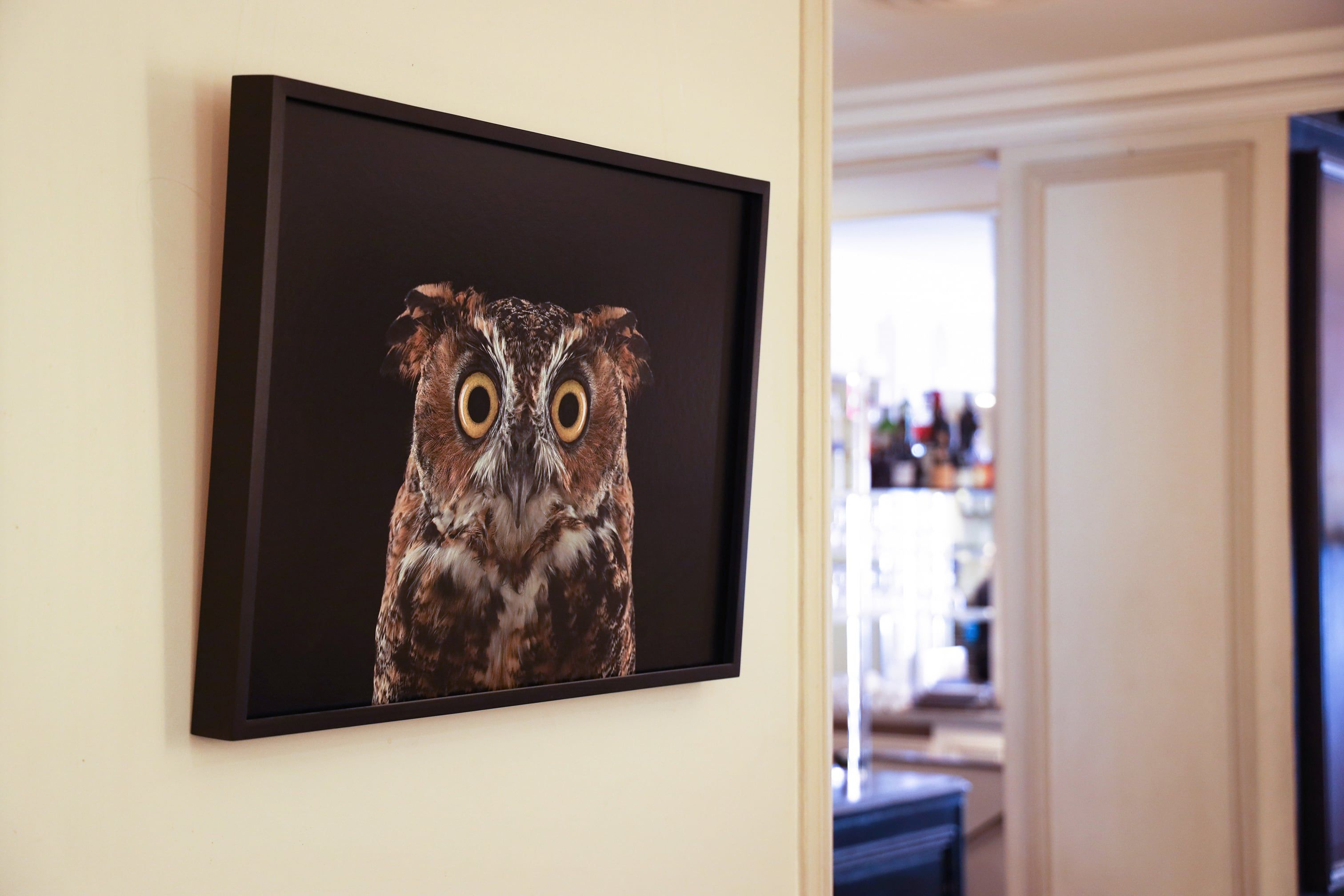 Great Horned Owl #3, Espanola, NM, 2011,Brad Wilson,Photographie, detail 2