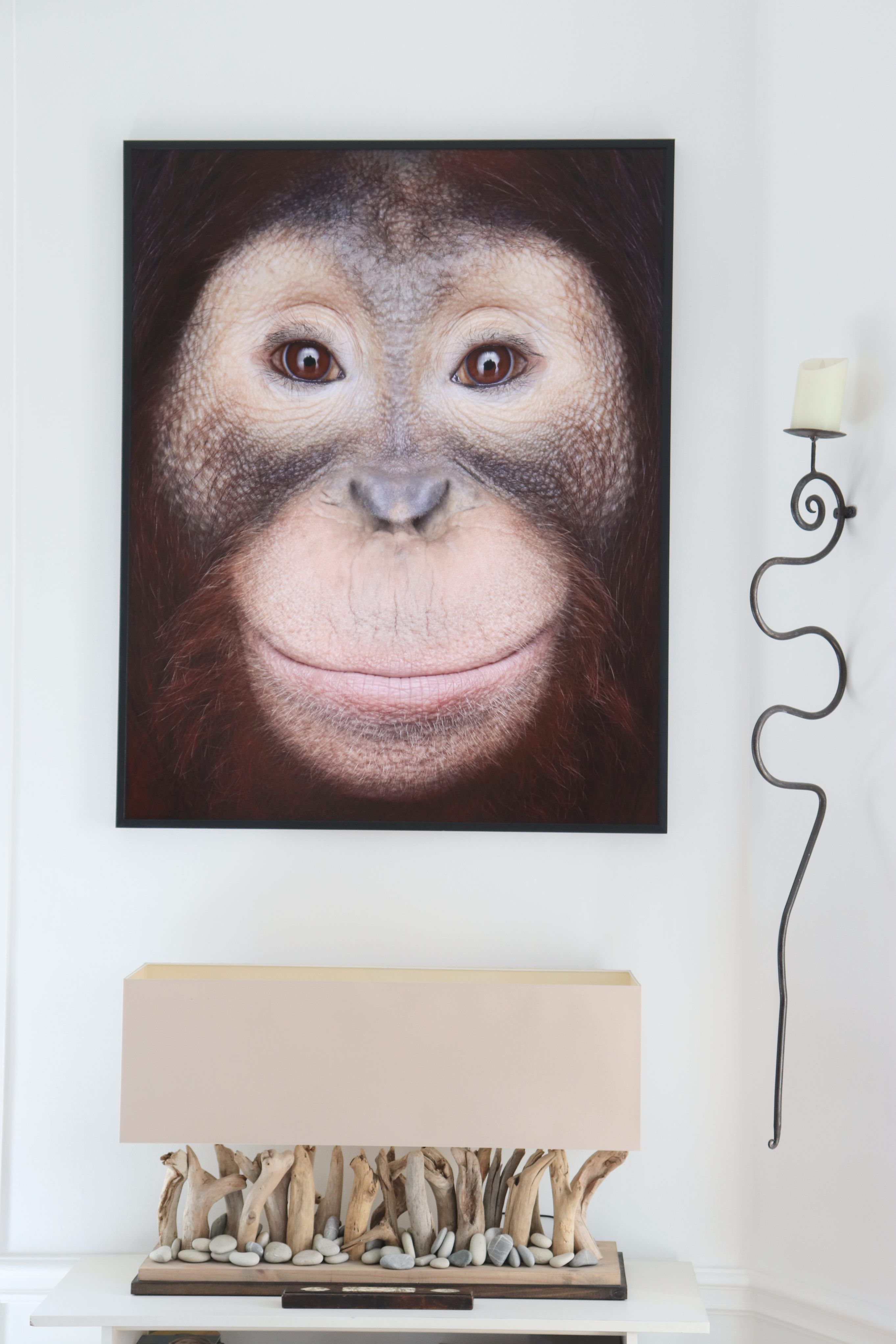Orangutan #1, Los Angeles, CA, 2011,Brad Wilson,Photography, detail 2