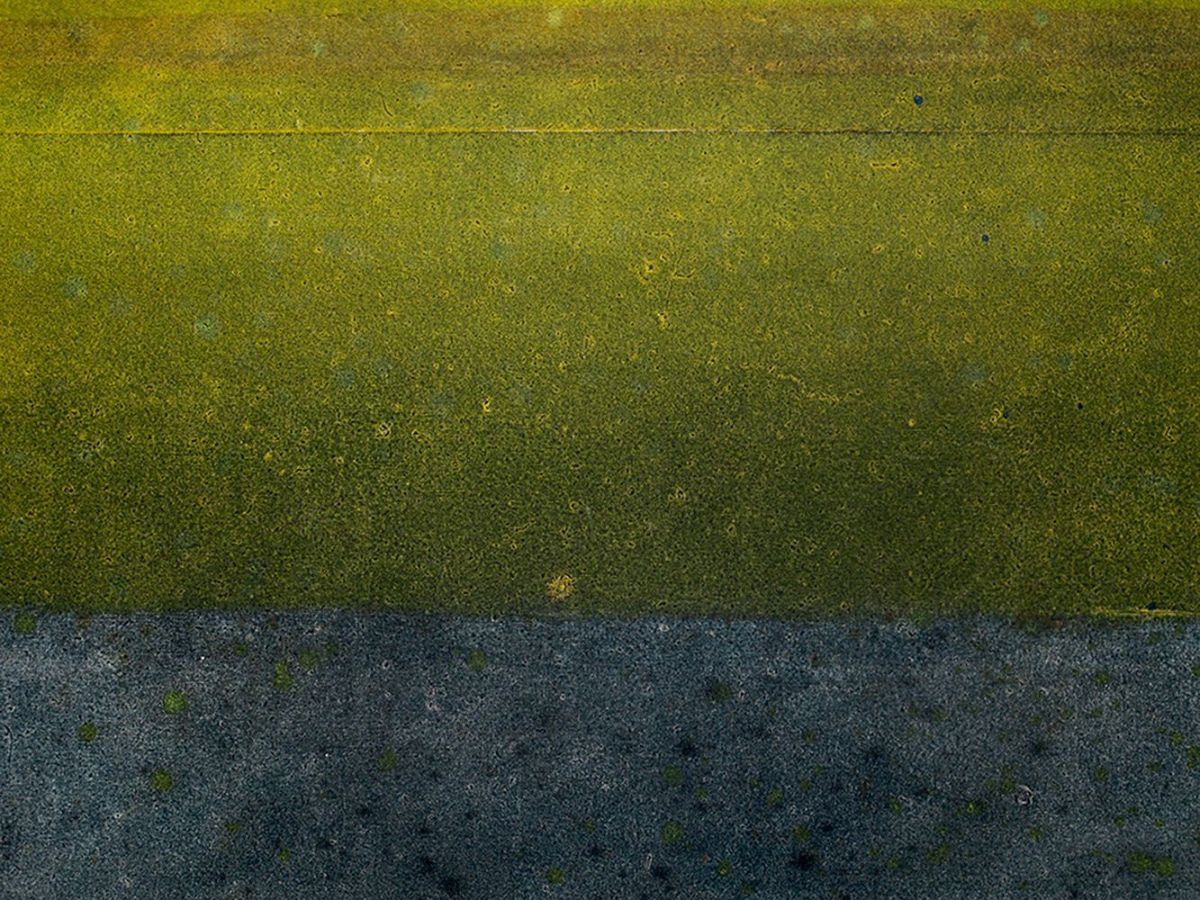 Untitled LXII, Abstract (large size),Elvire Ferle,Contemporary painting, detail 2