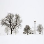 Trees and church (Bavaria)