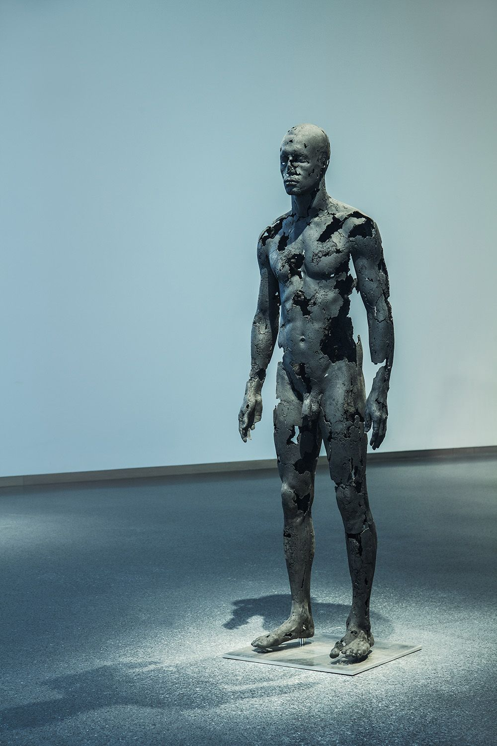 The Presence of Absence - Male (III) - Tom Price