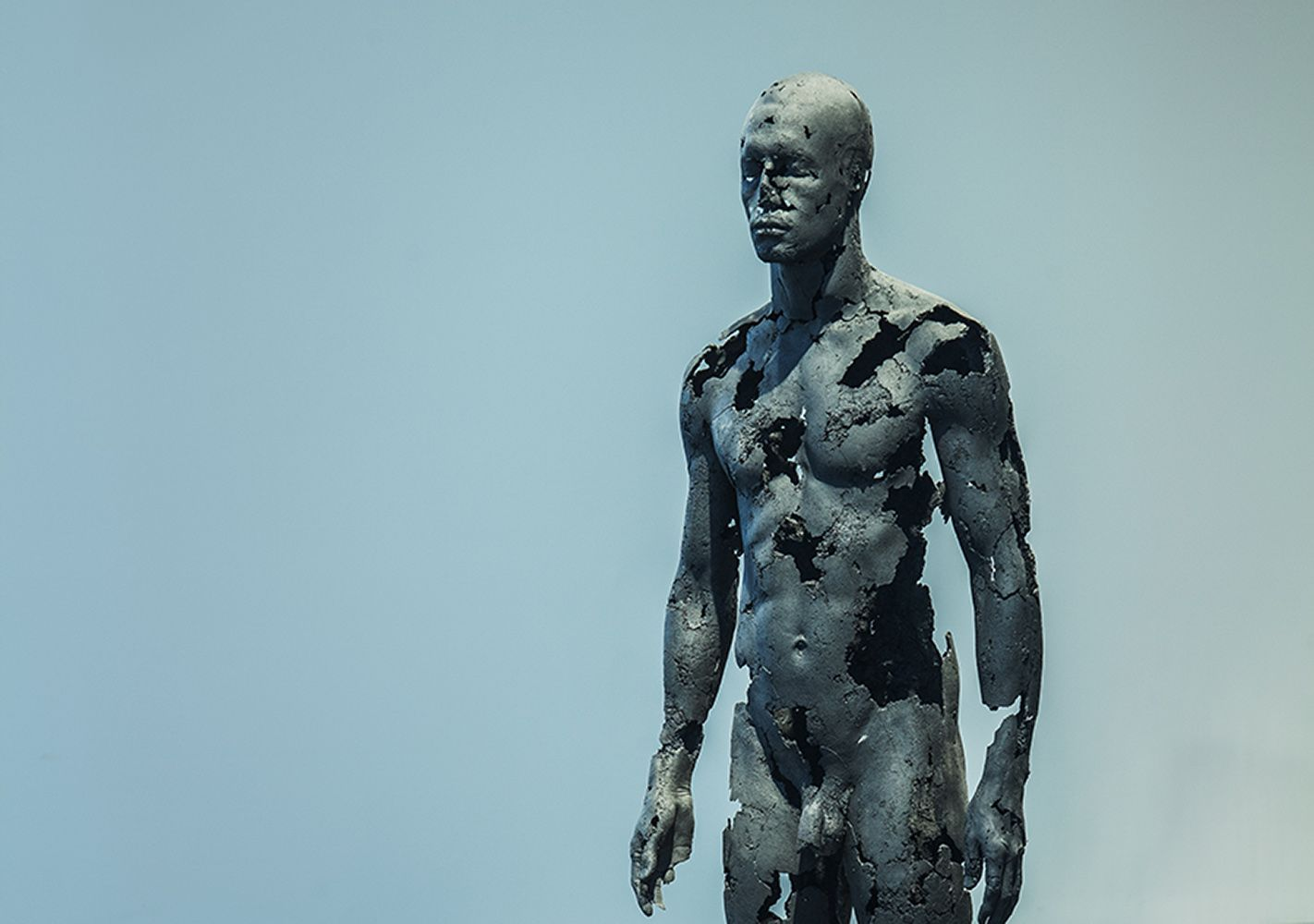 The Presence of Absence - Male (III),Tom Price, detail 2