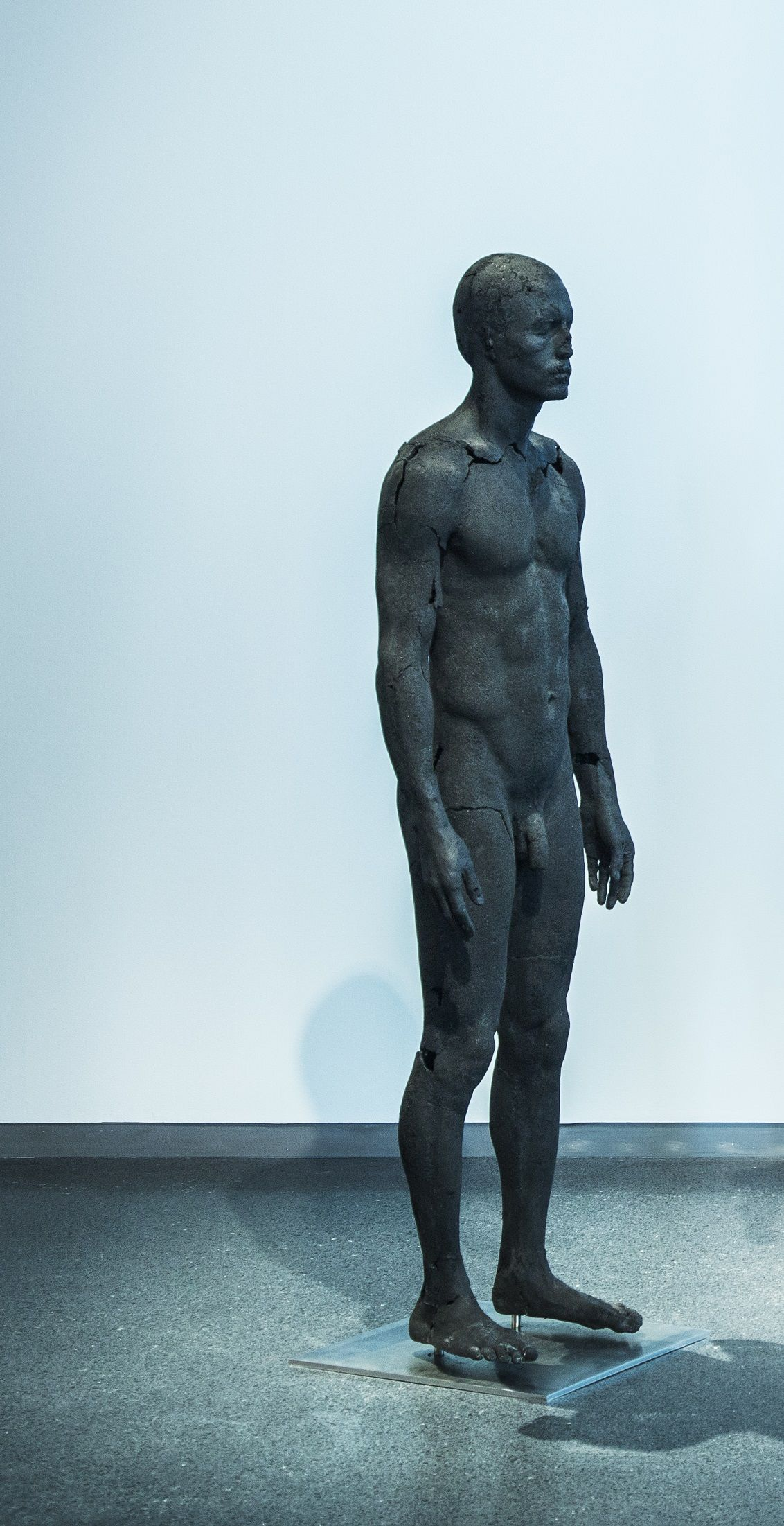 The Presence of Absence - Male (I) - Tom Price