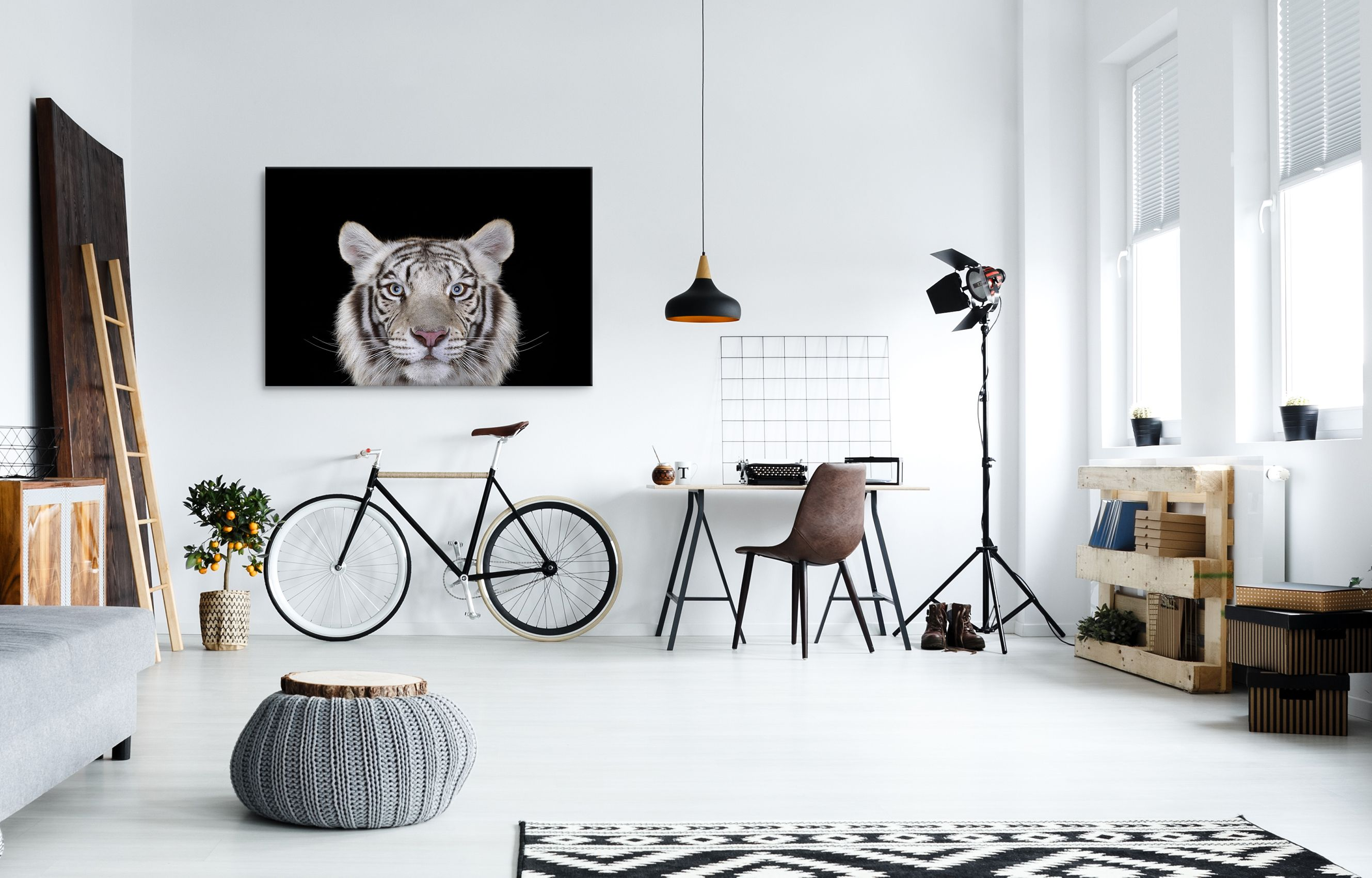 White Tiger #4, Los Angeles, CA, 2010,Brad Wilson,Photography, detail 1